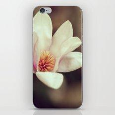 Tulip Magnolia iPhone & iPod Skin