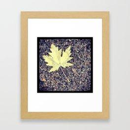 Beauty in the Fall Framed Art Print