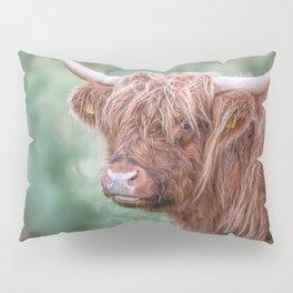 Scottish cow close up Pillow Sham