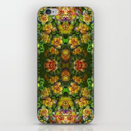 Colorful Succulent iPhone Skin