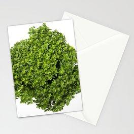 Fresh leaves of a Greek dwarf basil Stationery Cards