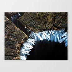 ice crystals II Canvas Print