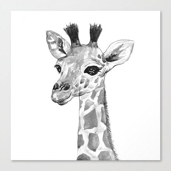 baby giraffe, black and white Canvas Print