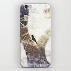 Bird Tales iPhone & iPod Skin