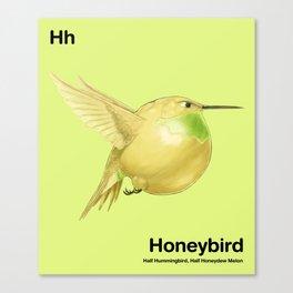 Hh - Honeybird // Half Hummingbird, Half Honeydew Melon Canvas Print