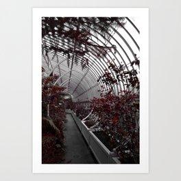 Asymptote Art Print