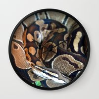 monty python Wall Clocks featuring Python by GardenGnomePhotography