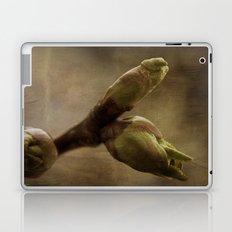 New Life Laptop & iPad Skin