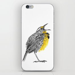 Eastern meadowlark iPhone Skin