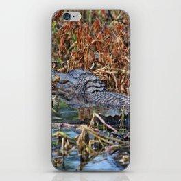 Hiding Spot For Alligator iPhone Skin