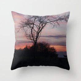 A Buck At Sunset Throw Pillow