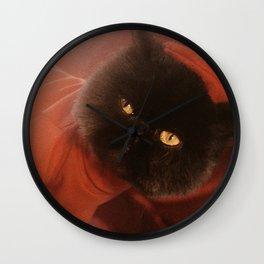 Muad'Dib Cat Portrait in Red Part II Wall Clock