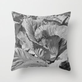 Noonday Farm Cabbage Throw Pillow
