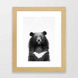 Bear Asian, Forest Animal, Woodland Animal, Teddy Bear Framed Art Print