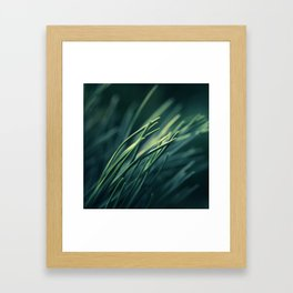 Chlorobionta Framed Art Print