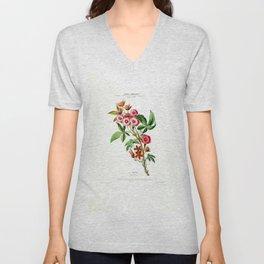 Vintage Botanical Le Noyau Flore D Amerique Unisex V-Neck