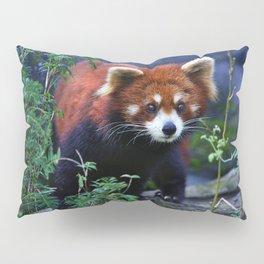 Red Panda Pillow Sham