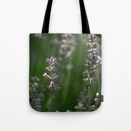 Lavender Buds and Bug Tote Bag