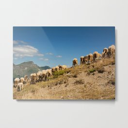 Show me your behind Metal Print