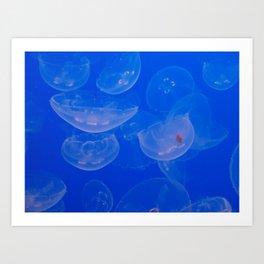 transparent buoyancy Art Print