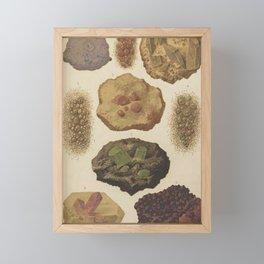 Gems And Minerals Framed Mini Art Print