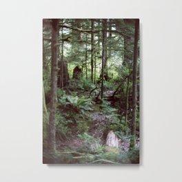 Vancouver Island Rainforest Metal Print
