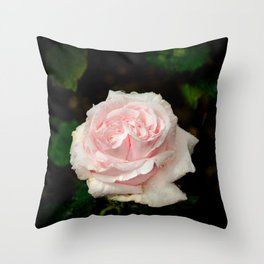 Rose twins with droplets Throw Pillow