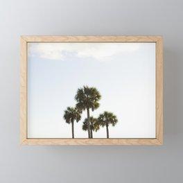 Four Palms Framed Mini Art Print
