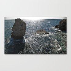 ----- Canvas Print