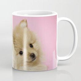 Pink Pomeranian Brothers Coffee Mug