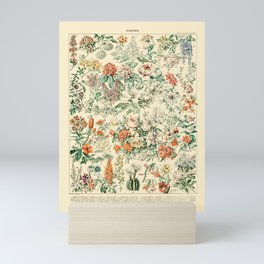 Wildflowers and Roses // Fleurs III by Adolphe Millot 19th Century Science Textbook Artwork Mini Art Print