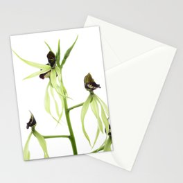 Dancing orchid pulpito serie 4/5 Stationery Cards