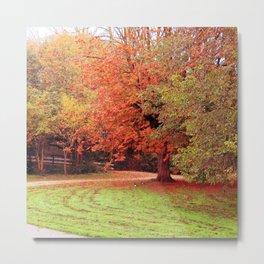 Autumn scenery #9 Metal Print