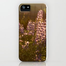 sunset lupin iPhone Case