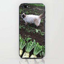 Yuki kung Japanese cat in farm iPhone Skin
