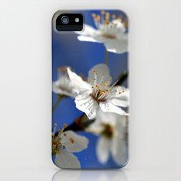 Weißdorn iPhone Case