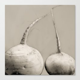 Turnips, Purple-top Canvas Print