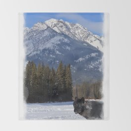 """Banff Wolf in Winter with Mt Cascade"" Throw Blanket"