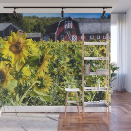 Sunflowers Field witha A New Jersey Barn Wall Mural