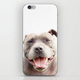 The Happy Staffy iPhone Skin