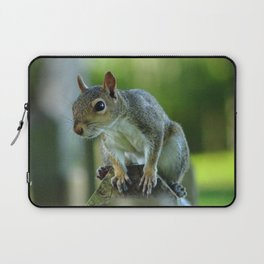 Squirrel on a Fence Laptop Sleeve