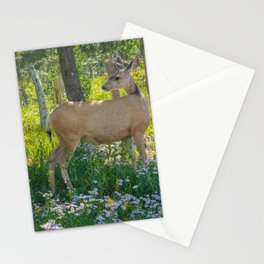 Grand Teton Mule Deer Print Stationery Cards