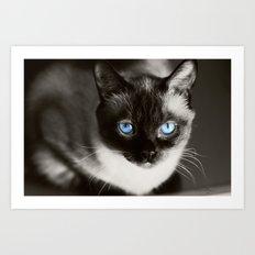 Stoney Blue Art Print