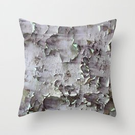Ancient ceilings textures 132a Throw Pillow