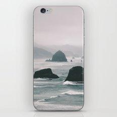 Ecola iPhone Skin