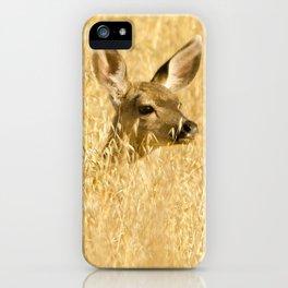 Deer in Malibu Creek State Park iPhone Case