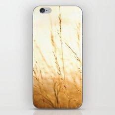 Fields of Bronze iPhone & iPod Skin