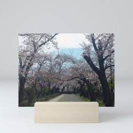 Sakura Path Mini Art Print