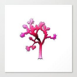 Joshua Tree Strawberry Canvas Print