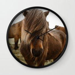 Icelandic Ponies Wall Clock